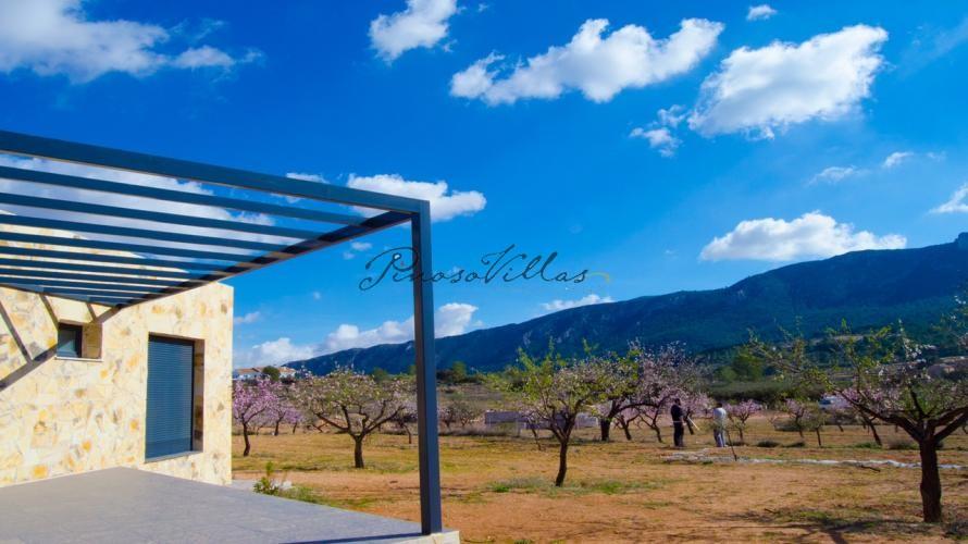Luxury New Build Villa designed to your specification in Pinoso Villas