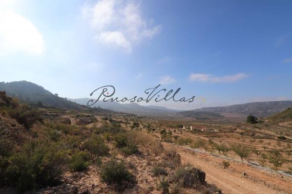 Building plot in Encebras Pinoso