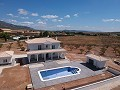 New build villa 195m2 with pool and plot in Pinoso Villas