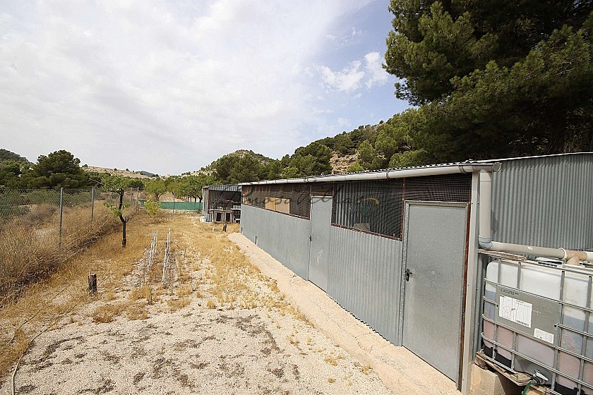Detached Country House 3km from Monovar in Pinoso Villas