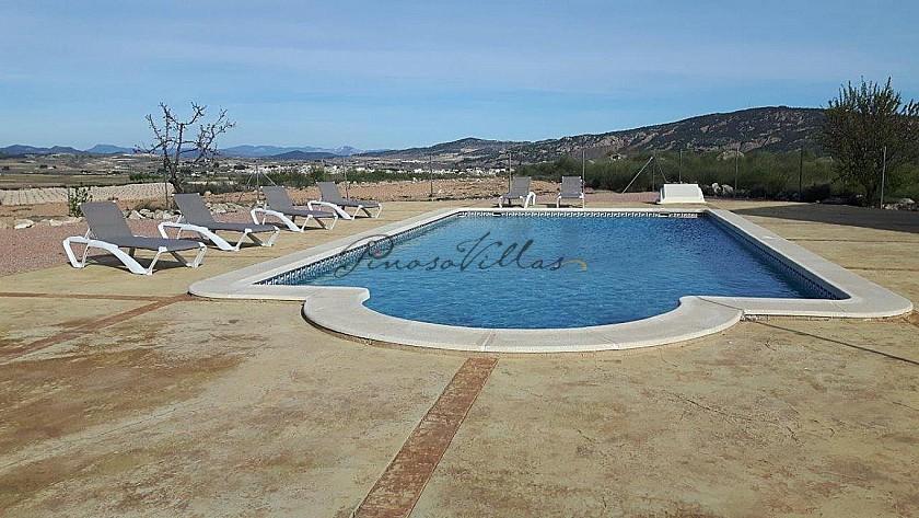 Luxury Villa in Pinoso in Pinoso Villas