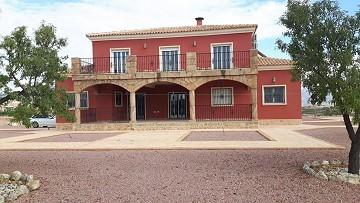 Luxury Villa in Pinoso