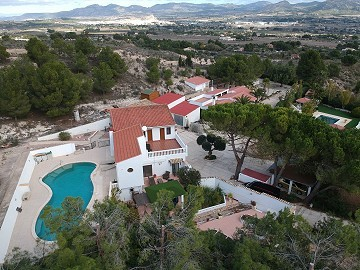 Country house in Alicante, Sax