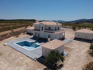 New Build Villas in Pinoso with pool and plot