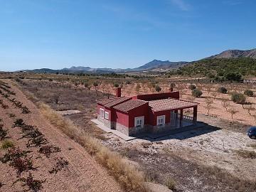 Detached Villa near Pinoso and Algueña
