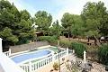 4 Bedroom 2 Bathroom country house in Terol in Pinoso Villas