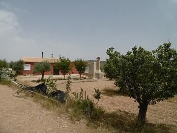 Country House 12km from Yecla