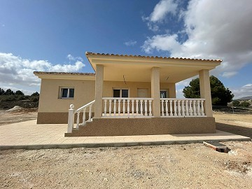 Brand new villa in Pinoso pool option