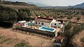 3&4 Bed Villa with pool, olive trees and views in Pinoso Villas