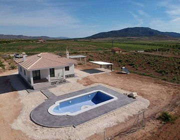 New build villa in Pinoso Alicante