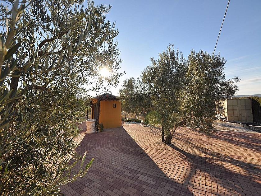 4+ Bed Villa in Sax with potential for guest floor in Pinoso Villas