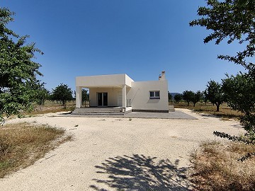 New Builds in Pinoso