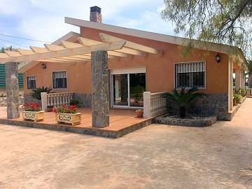High quality villa walking distance to Novelda