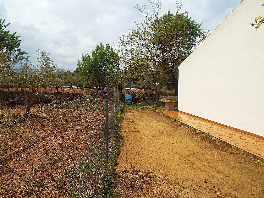 Stunning Walk to Town Villa in Ayora with large Pool in Pinoso Villas