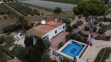 Charming Detached 4 Bedroom Villa With Pool And Lovely Gardens
